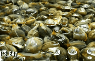 What you need to know when buying seafood