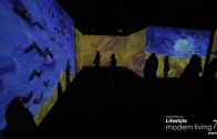Gallery visitors shed tears after experiencing Van Gogh Alive firsthand
